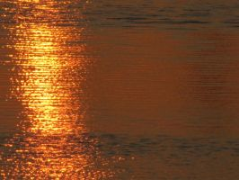 16-09-09 The Waterscape 1 by Herdervriend