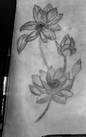 lotus flower drawing by dontbemad