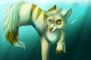 Underwater by LiaBorderCollie