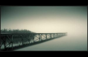 Fog II by Bazsitoo