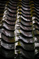Roof by bleaches