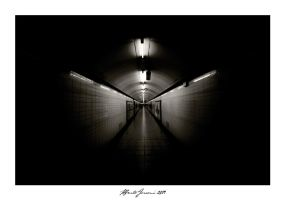 The Butterfly Subway by Demyan