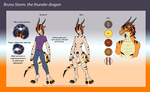 Personal Character Ref and Bio, Bruno Storm by The-Clockwork-Crow