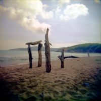 Holga 111 by xxlogre