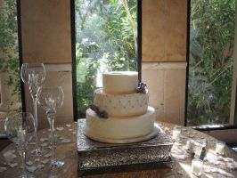 Wedding cake 131 by ninny85310