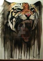 Tiger by Ajss51