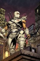 Storm Shadow Cover to Snake Eyes 10 by RobertAtkins