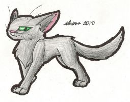 17. Hollyleaf by SuicuneNorth