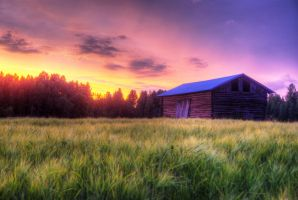 Barn by Laurilasner