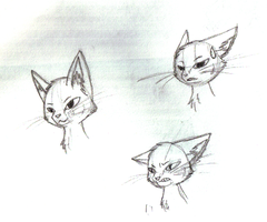 Cat Expressions by Little-Painter