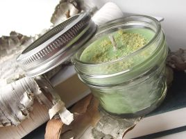 Dill Pickle scented Soy Candle -- 4 ounce Jar by curiouscarrie
