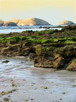 Background_beach rocks_I by GoblinStock