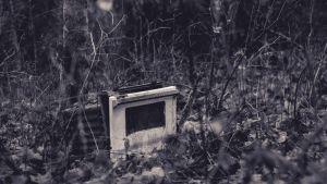 In the forest, the oven lives on by Maizzi
