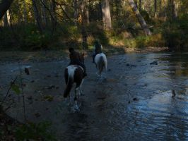 Horseback riding across the river by PUBLIC-DOMAIN-PICS