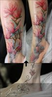 Magnolia color cover up by xandervoron