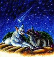 Under The Stars by ARVEN92