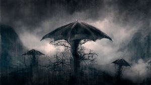 Umbrella trees by Silberius