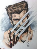 Logan by JoeyLeeCabral
