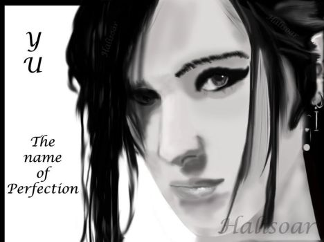The Name of Perfection by Halisoar