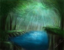Forest by amedved