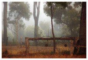 Another Foggy Morning 3 by AdamsWife