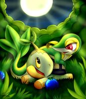 Snivy And Turtwig by lazyfoxxx