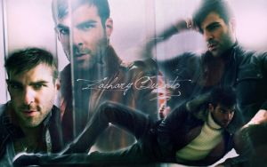 Zachary Quinto Wallpaper 6 by Raquel-Cheese