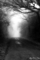 dark fog by LinsenSchuss