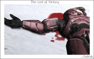 The Cost of victory by adrak