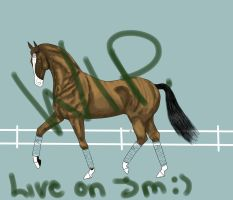 Royal Dressage Entry Wip- live on jm by Tuckerlyn