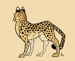 Cheetah by lightningspam