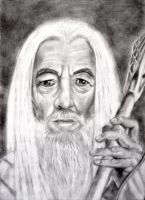 Gandalf the White by tanjadrawing
