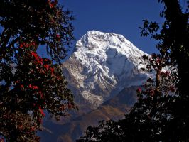 Dhaulagiri by Michel8170