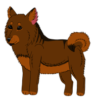 Chibi Chow-Chow by Bottled-Rottweiler