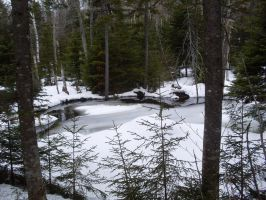 Ruisseau d'hiver by LeTrefle