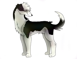 My New Puppy-finished by VampyKit
