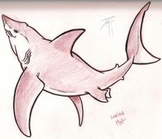Shark Week - Long Fin-Mako by elasticdragon
