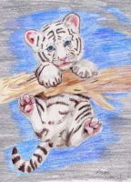 White Tiger Cub by MapleRose