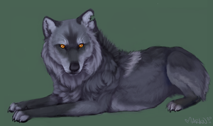 canis-ferox commission by julysky