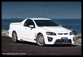 """Maloo"" Part 3 by autoshotz"