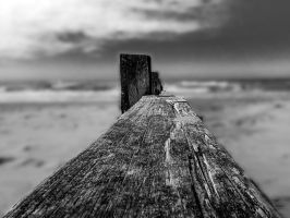 Walk the plank by friartuck40