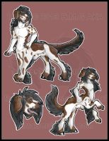 Comish: Canine taur of sorts 2013 by AirRaiser