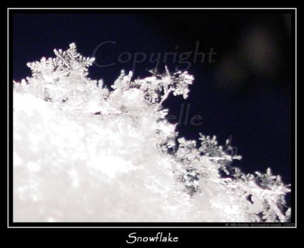 Snowflake by chelley815