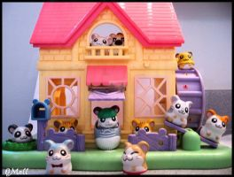 Hamtaro club by BeautifulDisgrace1