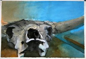 cow-skull in guoache by napoleoman