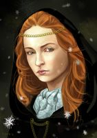 Winter is coming by Rinua