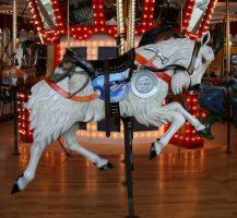 Great Plains Carousel 16 by Falln-Stock