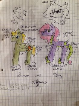 Draco and Ivy diffrences  by MLPNextGenFan