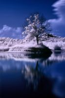 IR Lake... by IgorGlavas