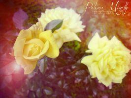 Spring dream by PMinelly